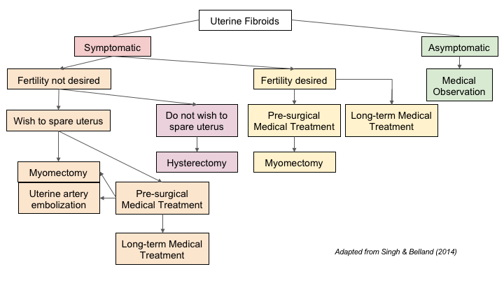 fibroid treatment algorithm based upon symptoms, location and goal of  treatment  adapted from singh & belland (2014)