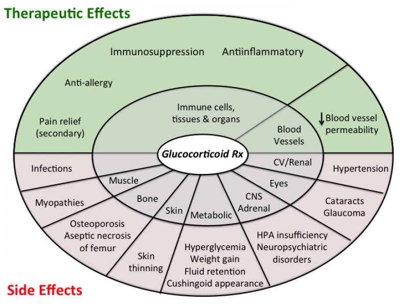 all_steroid_drugs [TUSOM | Pharmwiki]